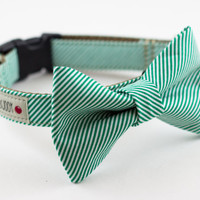 Green Seersucker Bow Tie Dog Collar