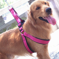 Dogs Chain Pet Chain Chock Chain Pet's Accessory [4923253956]