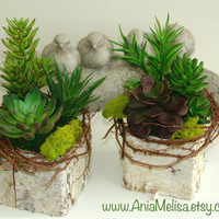 birch bark vases, wood boxes square flower pot, centerpieces succulent planter rustic chic wedding table decor woodland