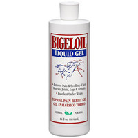 Bigeloil Liquid Gel - Topical Pain Relief Gel, Herbal Formula - 14 oz.