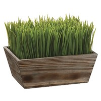 "Grass in Wood Planter - 8""H x7.75""D x10.5""W"