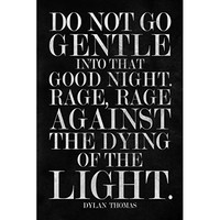 ProFrames Dylan Thomas Do Not Go Gentle Into Good Night Art Print Framed Poster