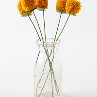 Anthropologie Pomdelion Bouquet from Anthropologie | BHG.com Shop