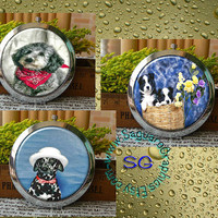 Pedrigree Dogs Art - - Digital Collage Sheets - 2.67 inch Circles for Pocket Mirrors, Magnets, Party Favors, Wedding Projects, Arts & Crafts