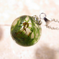 Cat Tail Moss (Isothecium myosuroides)  Sphere Necklace,  bryophyte pendant, woodland, forest, plant jewelry, leaf jewellery, Plated silver