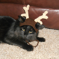 Knit Cat Hat  - Knit Reindeer Cat Hat - Cat Christmas Costume - Pet Christmas Costume - Cat Photo Prop - Knit Reindeer Hat for Kittens