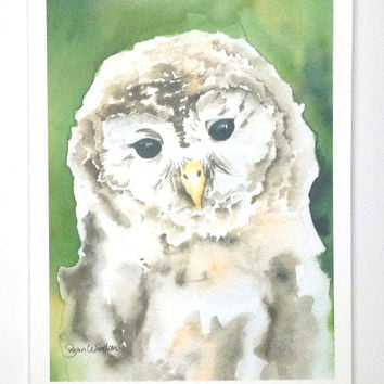 Barred Owl Note Card Set of 6