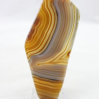 Polished Agate Slice - Rockology
