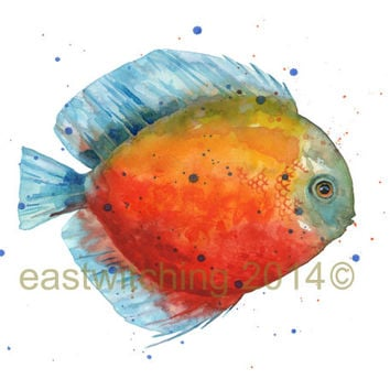 DISCUS FISH Print, Tropical fish , freshwater fish, colourful fish, aquarium, fish painting, watercolour fish, beach house decor
