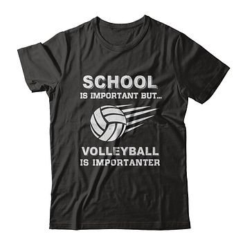 School Important Volleyball Is Importanter Gift