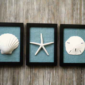 Cottage Chic Set Of Beach Wall Art, Art, Sea Shells Home Decor,