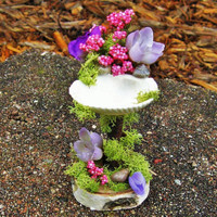 Seashell fairy sink. Fairy garden, fairy furniture, miniature garden, garden decor, terrarium. Charming gift!
