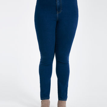 Plus Size High-Rise Skinny Jeans | Wet Seal Plus