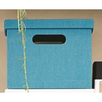 """11"""" Teal solid ext & int Lidded Milk Crate"""