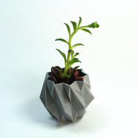 "Tiny Planter, 2.5"" EleMental Polygon Planter, 3D Printed Geometric Modern Art, Facet Planter, Small Polygon Planter"
