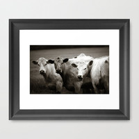 "farmhouse decor ""Cow Talk"" - farm photo - black and white photography  - kitchen home decor butcher farmers market"