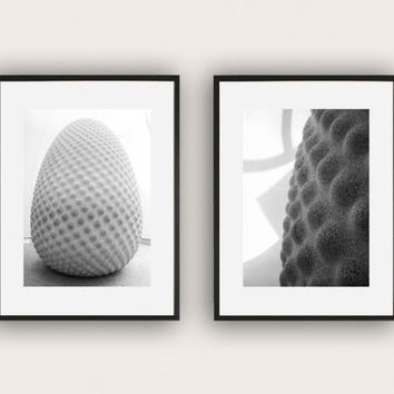 Black and White Photographs of the Seed Sculpture - A set of 2, Monochromatic Art Photography, Wall Art, Minimalistic Decor.