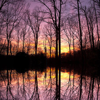 Reflections Of The Day Photograph by Daphne Sampson - Reflections Of The Day Fine Art Prints and Posters for Sale