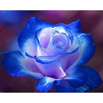 5D Diamond Painting Blue and White Rose Kit