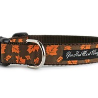 Autumn Leaves Dog Collar