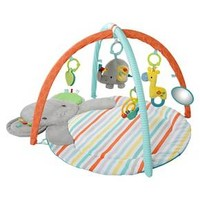 Bright Starts™ Hug-n-Cuddle Activity Gym - Multi-colored : Target