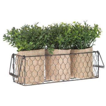 Boxwood Arrangement in Chicken Wire Basket | Hobby Lobby