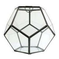 Pierre Faceted Terrarium | My Sparrow