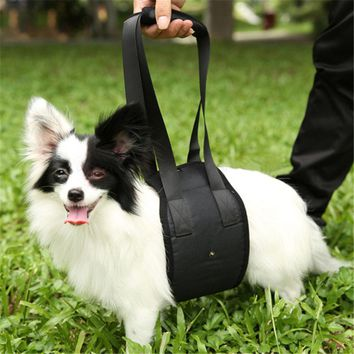 SUPPORT HARNESS WITH HANDLE FOR AID LIFTING OLDER INJURED ARTHRITIS WEAK HIND LEGS.