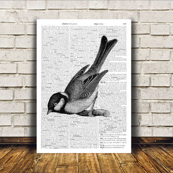 Great tit poster Bird art Dictionary print Modern decor RTA134