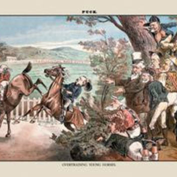 Puck Magazine: Over training Young Horses: Fine art canvas print (12 x 18)