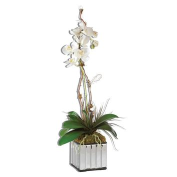 White Kaleama Orchids By Uttermost