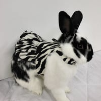 Zebra print harness dress for your bunny. Made to order.