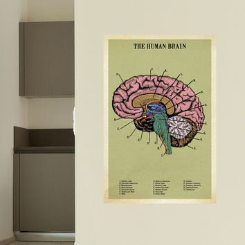 The Human Brain Adhesive Print