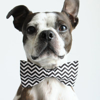 Black and White Chevron Geometric Dog Bow-tie  - Wedding Accessories for Dogs