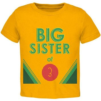 Crayon Big Sister of 3 Toddler T Shirt