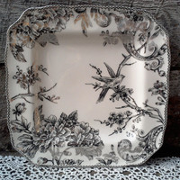 "Silver and Black Large Adelaide Bird Dinner Plate, Charger, Under Plate Liner, 10 3/4"", 222 Fifth, Gorgeous !"