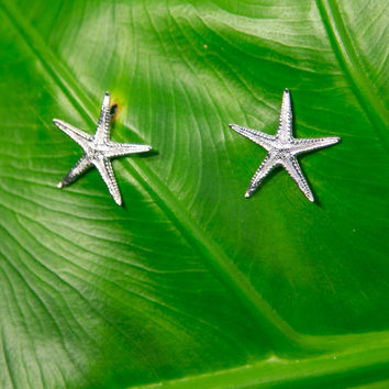 TIFFANY CHOU Large Starfish Earrings - Silver