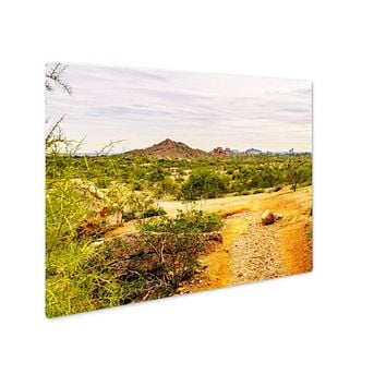 Metal Panel Print, Papago Park In The City Of Tempe Arizona In The United States Of America
