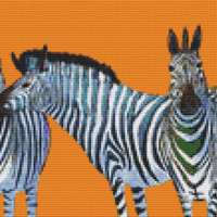 Modern Cross Stitch by Clara Nilles 'Candy Striped Zebras on Cantalope' cross stitch kit - Christmas Gift