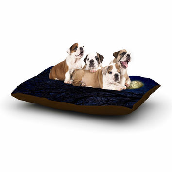 """Sylvia Coomes """"Blue Moon """" Blue Celestial Dog Bed"""