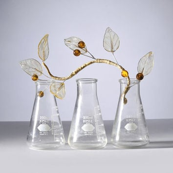 Vintage Lab Glass Vase Flask for Scientific Flowers, Kimax 250 ml