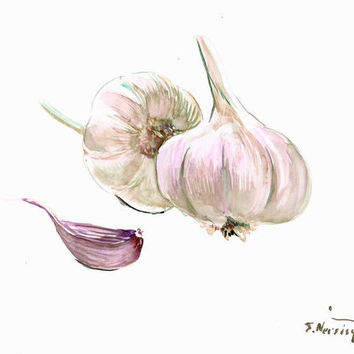 Garlic Art white kitchen wall art food painting food art restaurant garlic painting 12 x 9 in