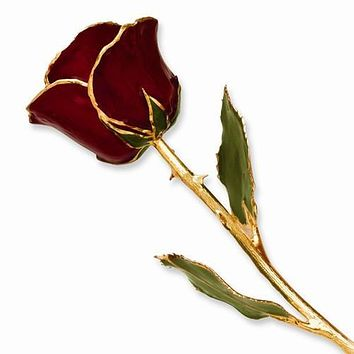 Lacquer Dipped Gold Trim Burgundy Rose