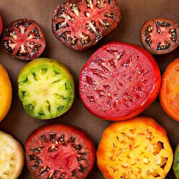 Rainbow Artisan tomato collection, 120 seeds, four tasty beauties, organically grown, non GMO, Brad Gates, farmers market hit