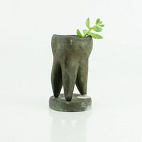 Vintage metal display tooth