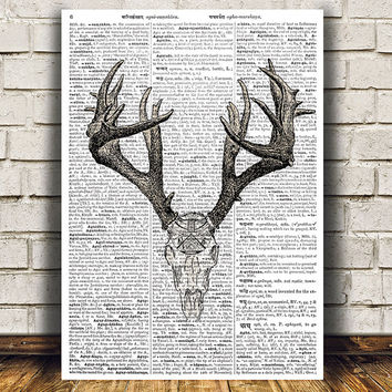 Deer skul poster Medical print Anatomy print Gothic decor RTA1056