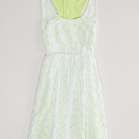 AEO Women's Floral Lace Dress (White)