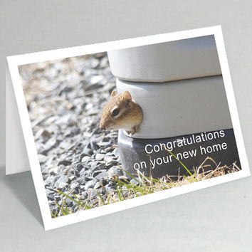 Congratulations on your new home card - Funny cards - Chipmunk congratulations greeting card - Funny card cute card (Ready to ship) 056CO