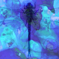 Blue Dragonfly by Sharon Cummings Art Print by Sharon Cummings