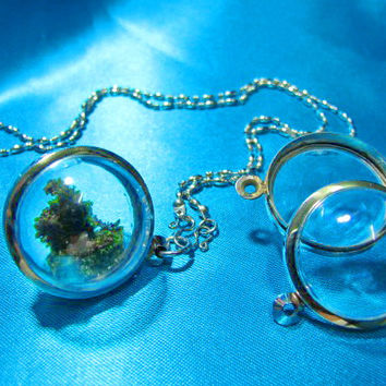 30mm Large Candy Pendants, Lot of 3,Living plant jewelry,Stainless,Empty Display Case, Terrarium Necklace,Moss Terrarium, Clear Locket